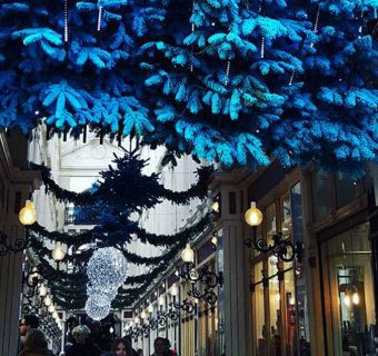 Marche Noel Nantes passage Pommeraye reveillon architecture Emilie Fiala