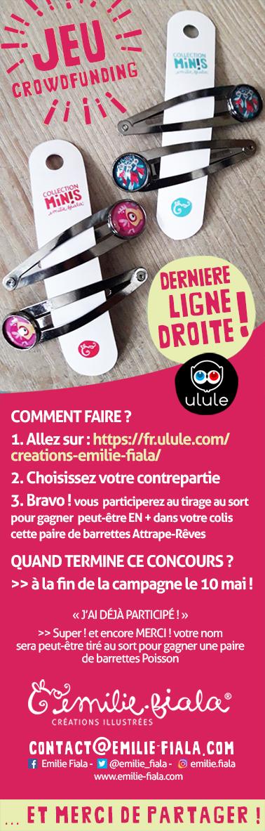 Concours02-Ulule-barrettes-Emilie-Fiala