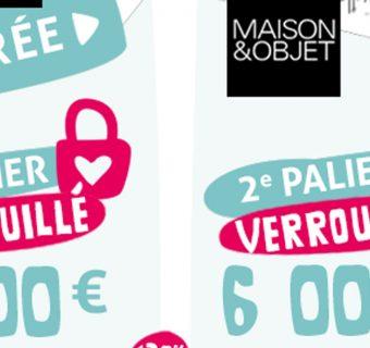 Paliers-campagne-crowdfunding-Emilie-Fiala