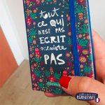 Carnet-Les-Parisiennes-Emilie-FIALA-ferme-notes-croquis