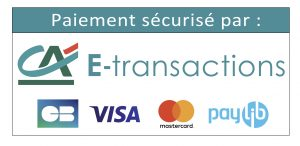 ca-e-transactions-cb-visa-mastercard02
